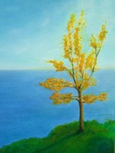 The Fiona Tree